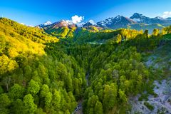 Summer spring forest mountain landscape, Sochi Russia. Royalty Free Stock Photos