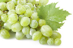 Green freshness grape royalty free stock photo