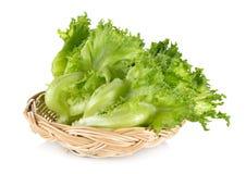 Green frillies iceberg lettuce in rattan basket on white background. Green frillies iceberg lettuce in rattan basket on awhite background stock image