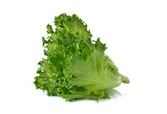 Green Frillies Iceberg lettuce on white Royalty Free Stock Photos