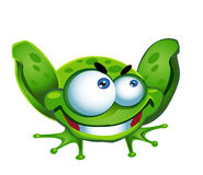 Green frog stock image