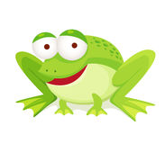 Green frog. Isolated on white Royalty Free Stock Photos