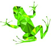 Green frog royalty free illustration