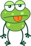 Green frog in apathetic mood Stock Photo