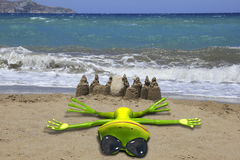 Green frog on the beach Royalty Free Stock Photo