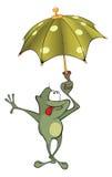A green frog. Cartoon Stock Photography