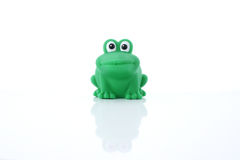 Green frog children's toy. Children's rubber toys for bathing of the kid. On a white background royalty free stock image