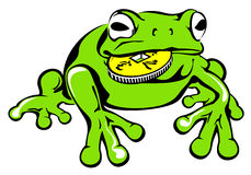 Green frog with coin Stock Photos