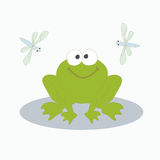 Green frog and dragonfly. Vector illustration. The image of a small cheerful green frog with two flying side by dragonflies Royalty Free Stock Image