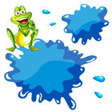A green frog and an empty blue template Royalty Free Stock Images
