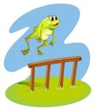 A green frog hopping Royalty Free Stock Photo