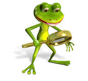 Green frog with magnifying Royalty Free Stock Photography