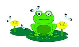 Green frog. Vector illustration Stock Photo