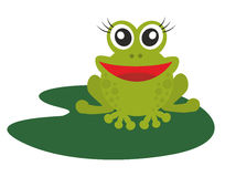 Green frog. On a white background Stock Photo