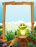 Green frog by the wooden frame Stock Photography