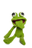Green froggy Stock Images