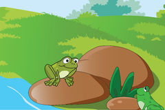Green frogs. Two frogs around the river royalty free illustration