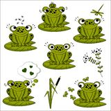 Green frogs set Royalty Free Stock Photos
