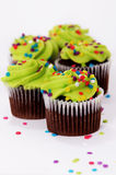 Green frosted cupcakes Stock Photos