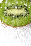 Green fruit Royalty Free Stock Image