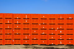 Green Fruit packing crates Stock Images