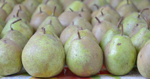 Green fruits of pear closeup royalty free stock images