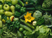 Green fruits and vegetables Royalty Free Stock Images