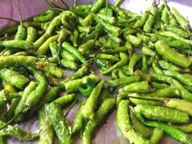 Green fry chilli Royalty Free Stock Images