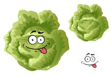 Green funny cabbage vegetable Royalty Free Stock Images