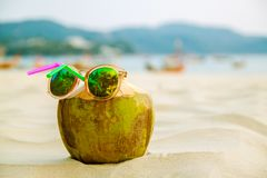 Green coconut in sun glasses on white sandy beach, summer travel concept background. royalty free stock photography