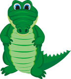 Green funny crocodile Stock Image