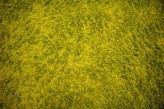 Green fur carpet background texture. Green carpet fur closeup stock photography