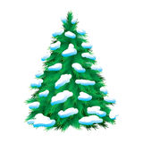 Green fur-tree covered with snow. Isolated. Christmas picture Stock Photos