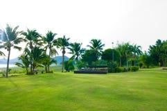 Green gardan Stock Photo
