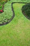 Green garden. Curve of grasses in green garden Royalty Free Stock Photos