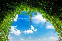 Green garden archway Royalty Free Stock Photo