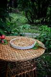 In a green garden on a dish, apple charlotte Stock Photos