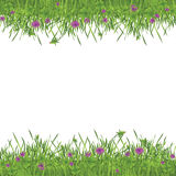 Green garden frame. Illustrated grass with clovers and flowers as photo frame or background texture Royalty Free Stock Photography