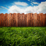 Green Garden. Green gras in front of a wooden fence Stock Photos
