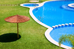Green garden with grass and swimming pool Royalty Free Stock Image