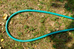 Green garden hose in a roll Royalty Free Stock Image