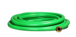 Green garden hosepipe isolated on white Stock Image