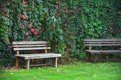 Green garden. This image was taken in Kusadasi, Turkey Stock Photos