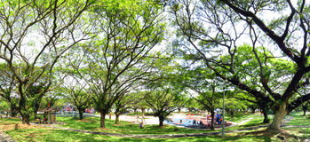 Green garden with a lot of trees and Childen playground Royalty Free Stock Image