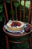 In a green garden in the nature fruit pie with strawberries and other berries royalty free stock image