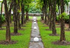 Green garden park Royalty Free Stock Photography