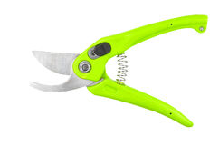 Green garden pruner. Isolated on a white background Stock Image