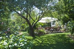 Green Garden  and Some wooden garden table very nice view in the nature Bodrum Stock Image