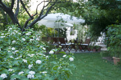Green Garden  and Some wooden garden table very nice view in the nature Bodrum Royalty Free Stock Photo