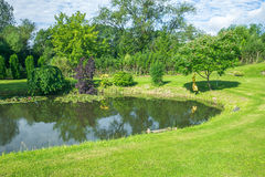 Green garden and summer Smell. Royalty Free Stock Images
